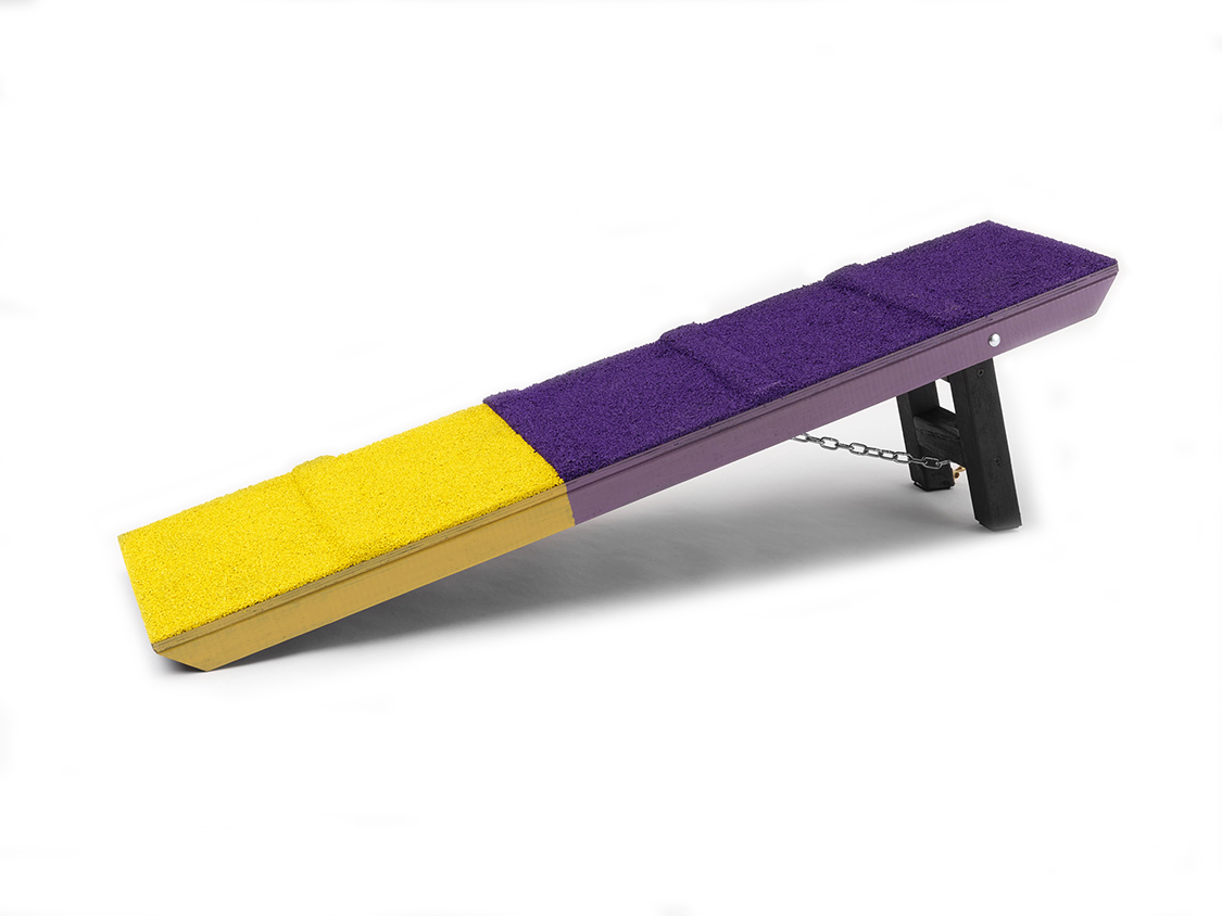 4ft Contact Trainer Ramp